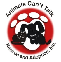 Animals Can't Talk | Cat Rescue in East Stroudsburg, PA